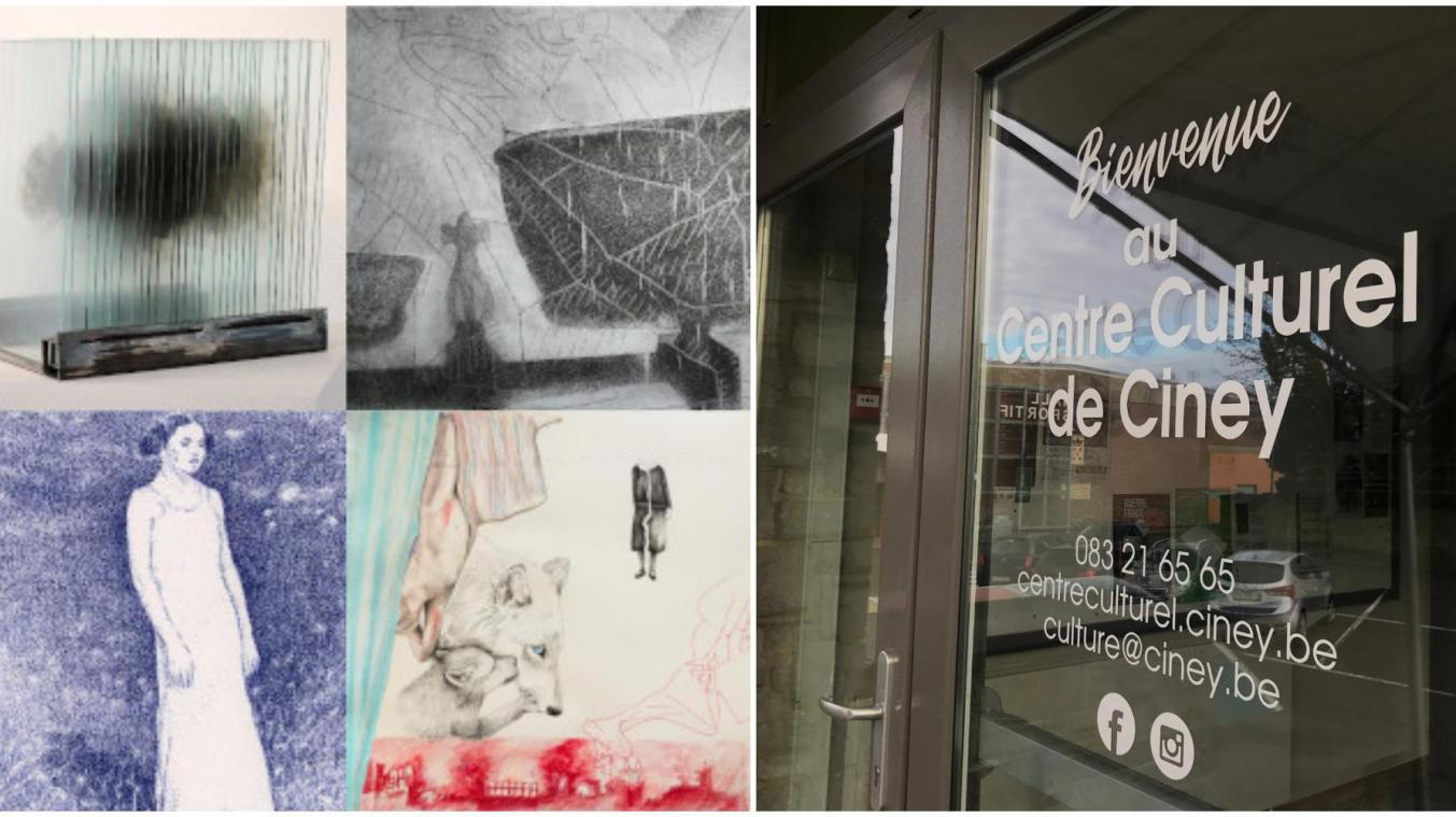 Six artistes inconventionnels s'exposent au centre culturel de Ciney.